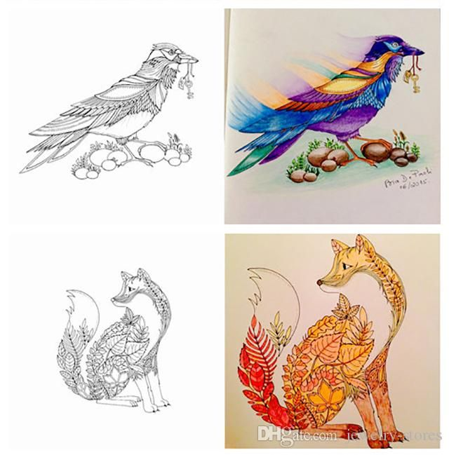 Enchanted Forest Coloring Book Gallery