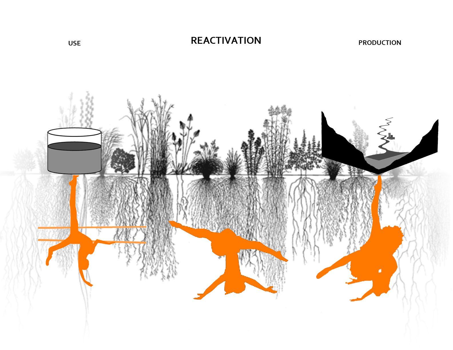 Architectural Program Diagrams