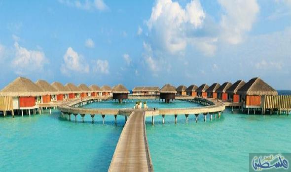 جزر المالديف دولة مسلمة وقصتها أسطورية والسياحة فيها لها قيود Outdoor Decor Outdoor Pool