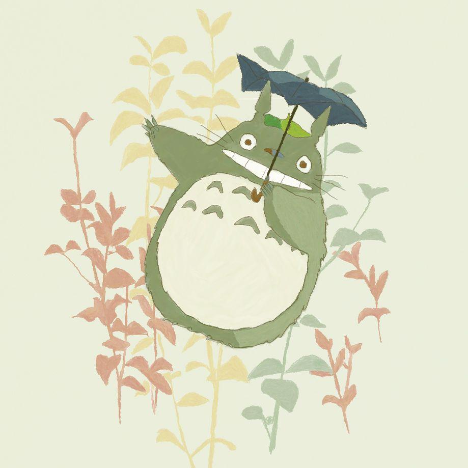 Totoro Mein Nachbar Totoro Pinterest Totoro Studio