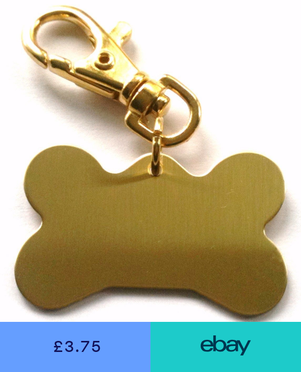 Collars Tags Pet Supplies Ebay Pet Tags Dog Bone Dog Id Tags