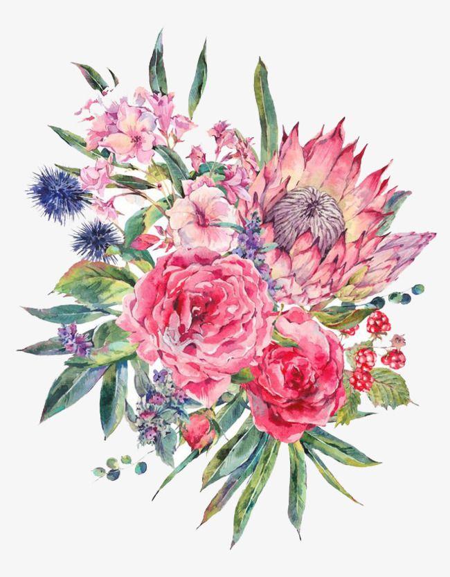Watercolor Flowers Watercolor Clipart Watercolor Flower Png