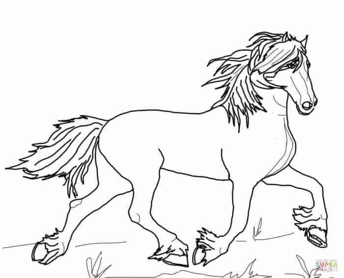 ausmalbilder wildpferde  ausmalbilder pferde zum
