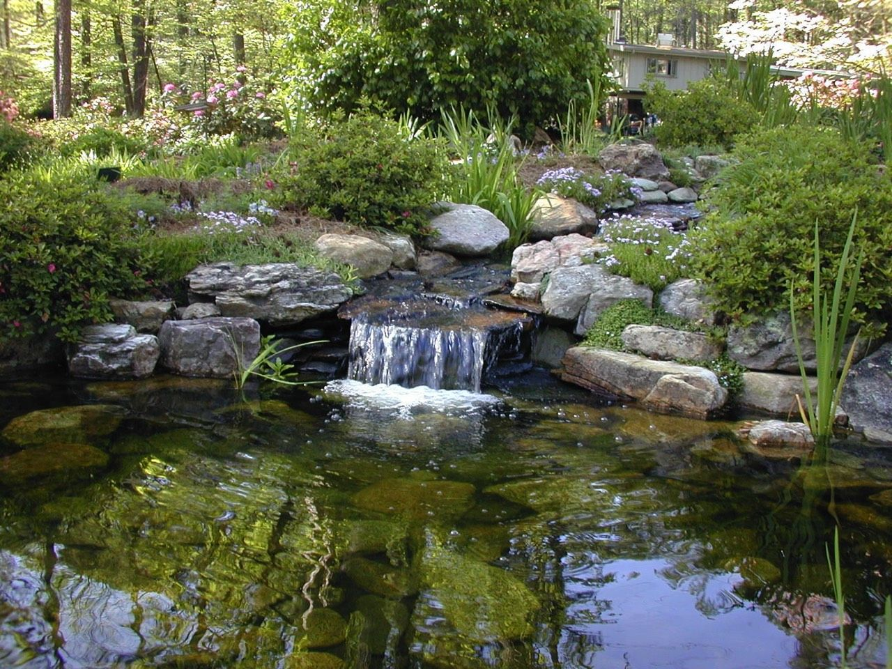 Waterfall small cascade stream pond koi ponds for Koi pool water gardens cleveleys