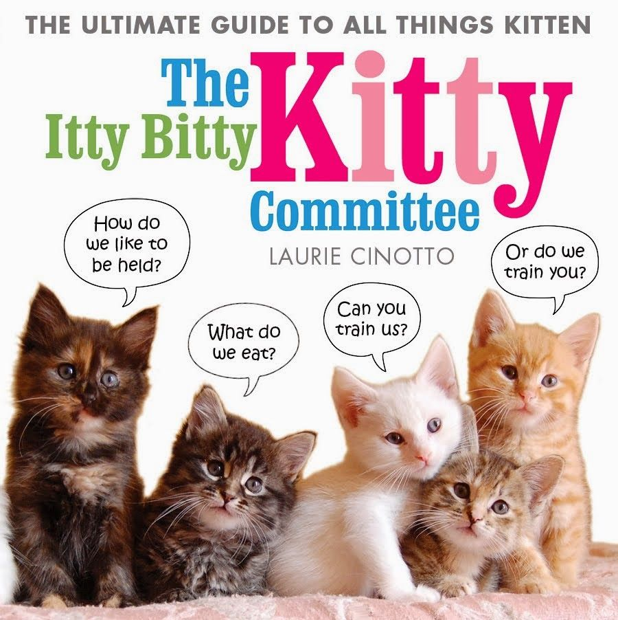 The Itty Bitty Kitty Committee Kitty Movie Archive Kitty Itty Bitty Siberian Cats For Sale