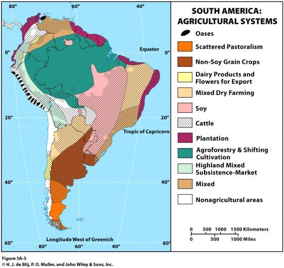 south american agriculture essay Proponents of the new south first turned to secondary crops that could thrive in southern soil tobacco was the second most vital crop after cotton to the pre-war south several factors led to a resurgence in tobacco production following the civil war.