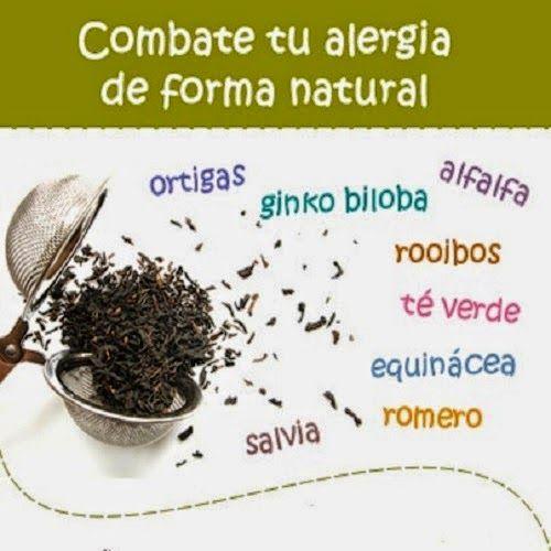 TU SALUD: FORMA NATURAL DE COMBATIR LA ALERGIA