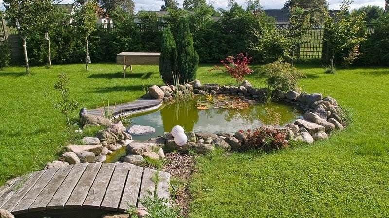 Bassin aquatique de jardin- étapes de construction et photos!