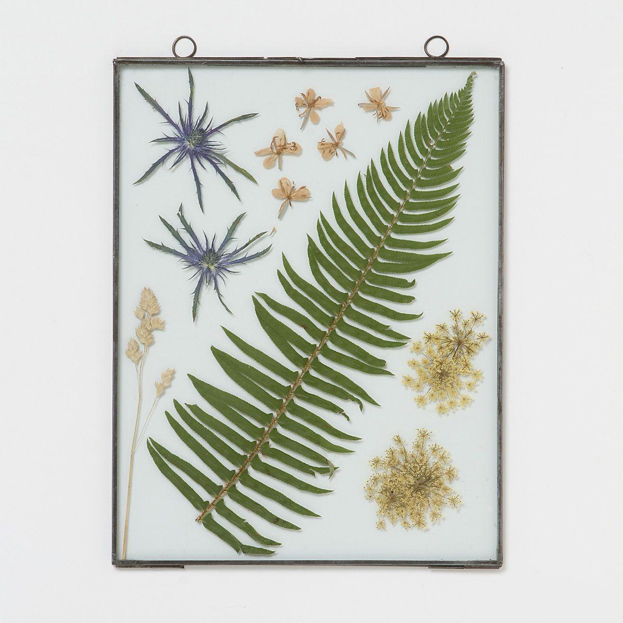 Terrain Home Decor: Botanical Frame, Large Rectangle In House+Home HOME DÉCOR