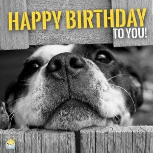 c02eb85ef471022a4f927dfadd96f728 geburtstag 55 jpg von renilinz auf www funpot net birthday wishes