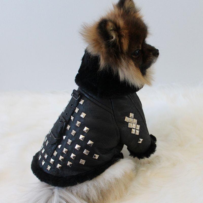 Genuine Leather Shearling Studded Luxury Dog Coat Dog Coats