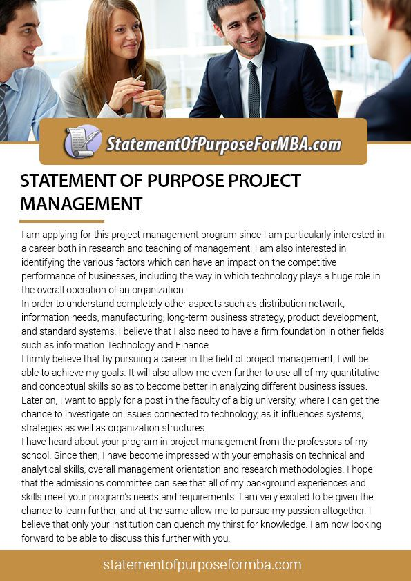 Program management career essay