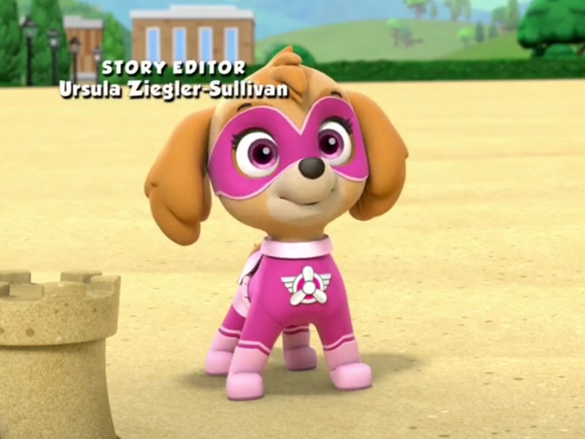 Pictures Of Skye Paw Patrol