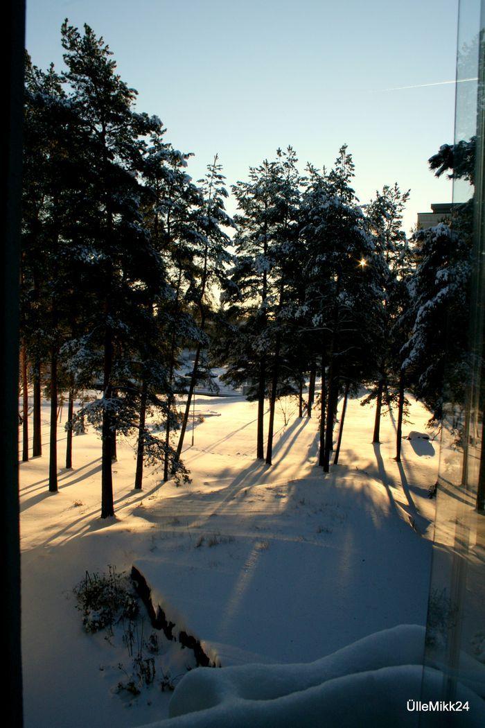 Bongasitko auringon? Jaa kuva #talviaurinko | Yle Uutiset | yle.fi