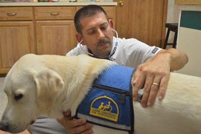 Dr Paroff With Avery Veterinary Pet Clinic Veterinary Hospital Animal Hospital