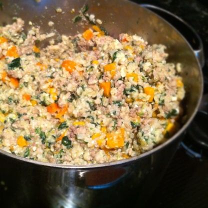 Homemade dog food in the crockpot receta forumfinder Image collections