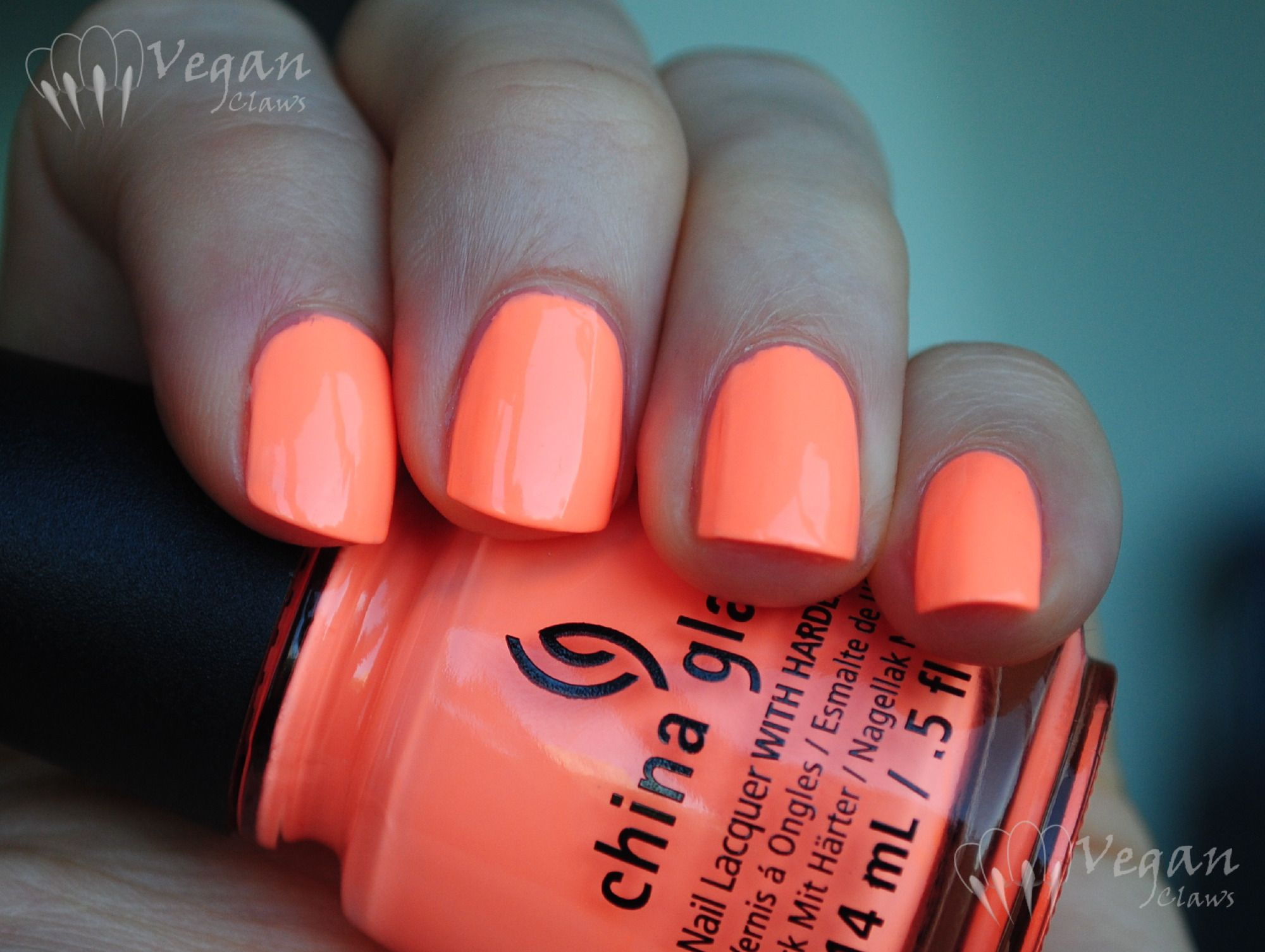 Bright Nail Colors Funky Fingers Vegan Claws | Nail It To The Wall ...