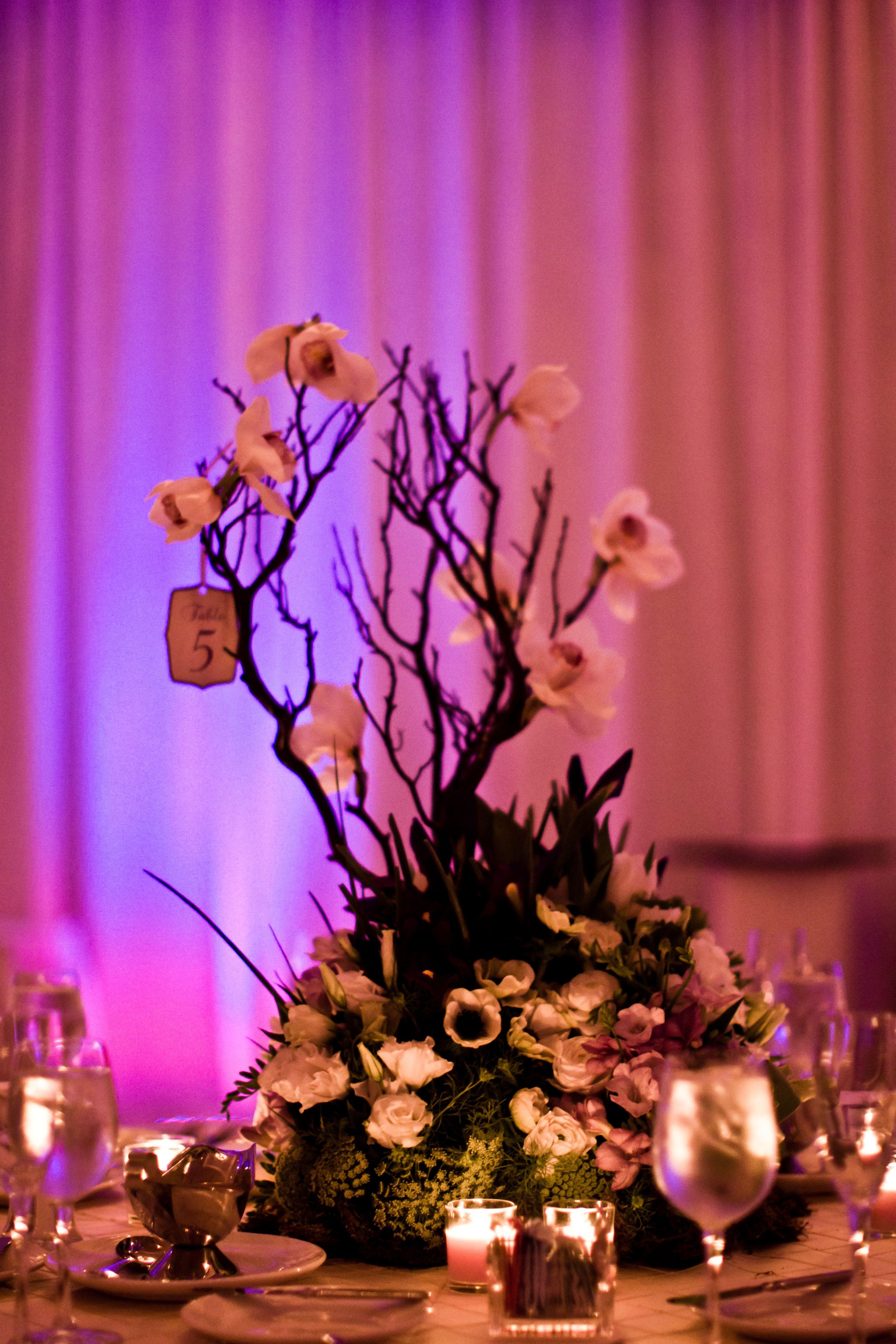 wedding reception centerpiece photo credit Oz Wroe photography ...