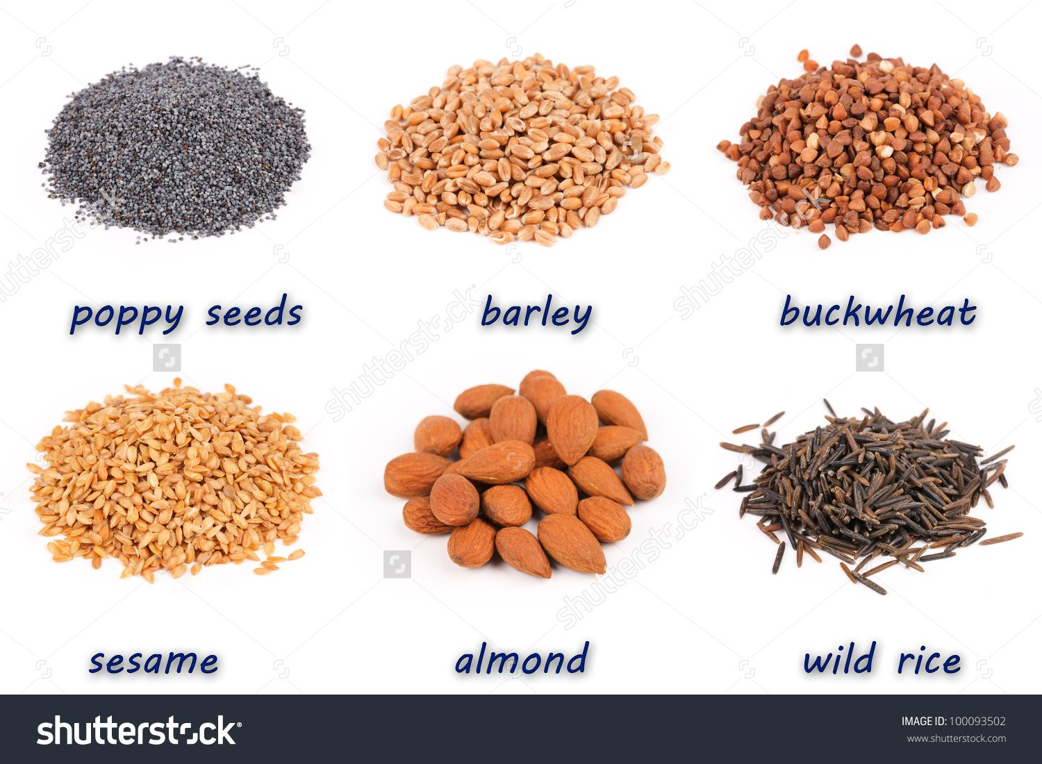 Examples of Protein Rich Foods Protein, Protein rich