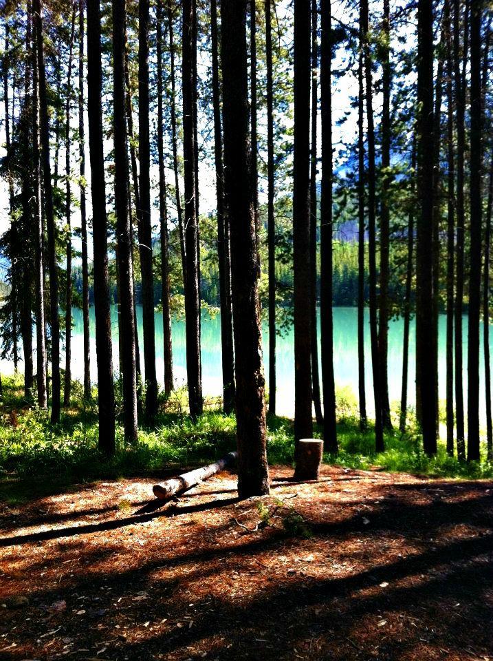 Two Jack Lake Campground In Banff Alberta Canada Banff Yoho National Park Alberta Canada Banff