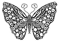 Butterfly Spots Coloring Page Crafts Butterfly Coloring Page