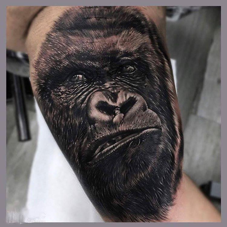 Inkaholik tattoos miami on instagram silverback gorilla