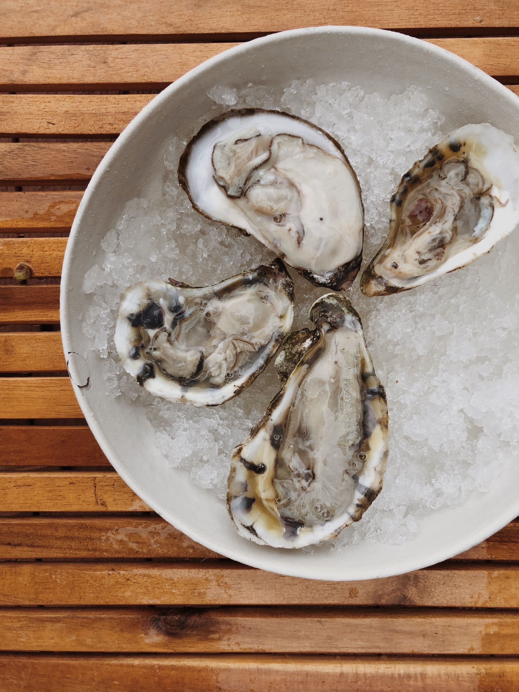 How To Shuck An Oyster Savoury Food Shucking Shucking Oysters