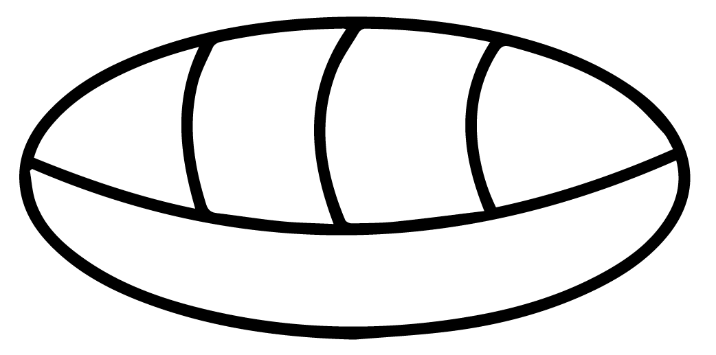 The Mayan Symbol For Zero Also Represents A Shell The Use Of Zero