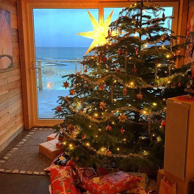 Riktig god jul alle sammen ❤️ Merry Christmas! 🎄🎁 #christmastree #juletre #gran #stjerne #naturhuset #julistua #julaften #julegaver #spentebarn #kjærlighetpåjord #fredpåjorden #jul