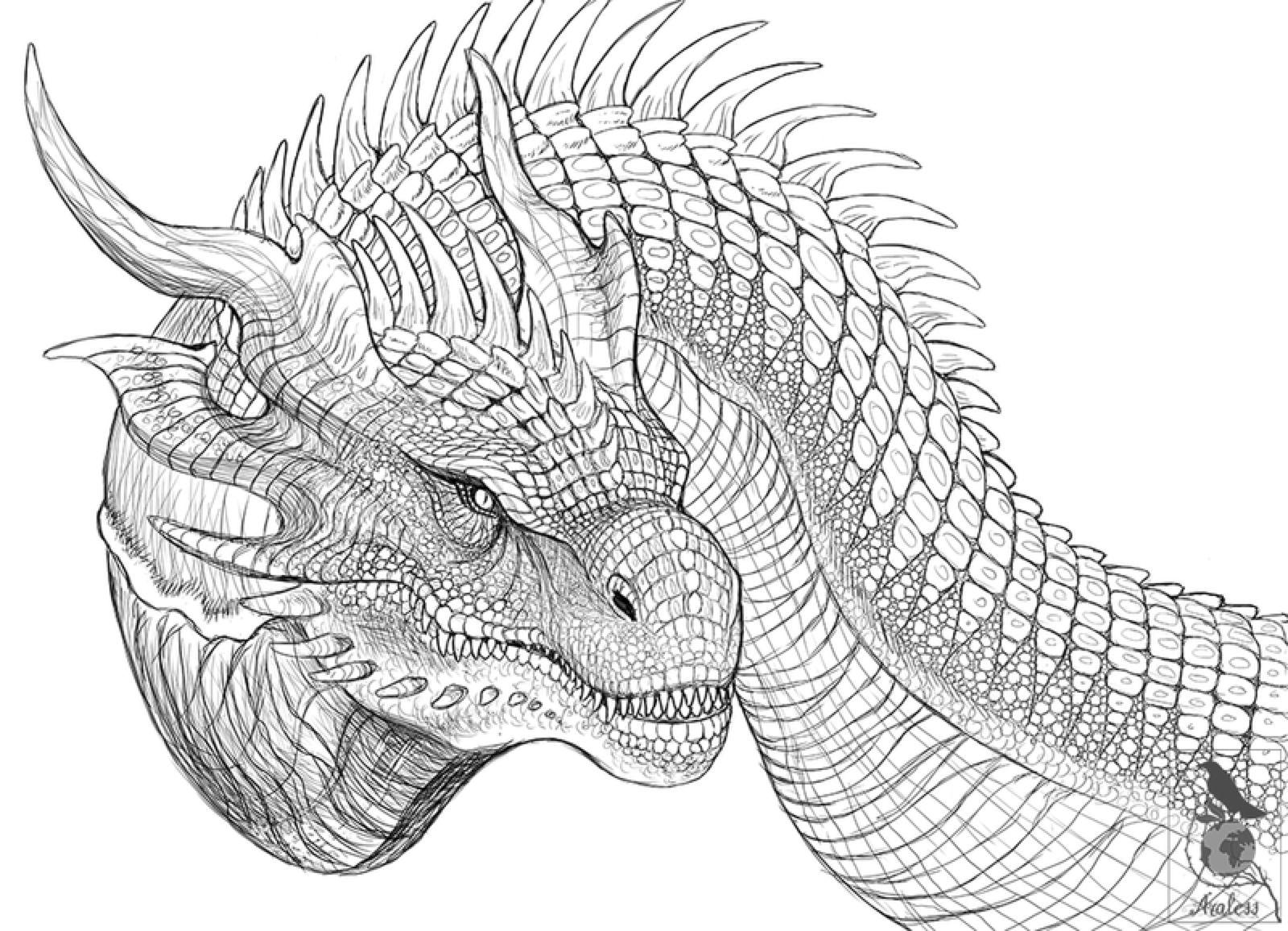 Iron Dragon Sketch By Araless On Deviantart Dragon Sketch