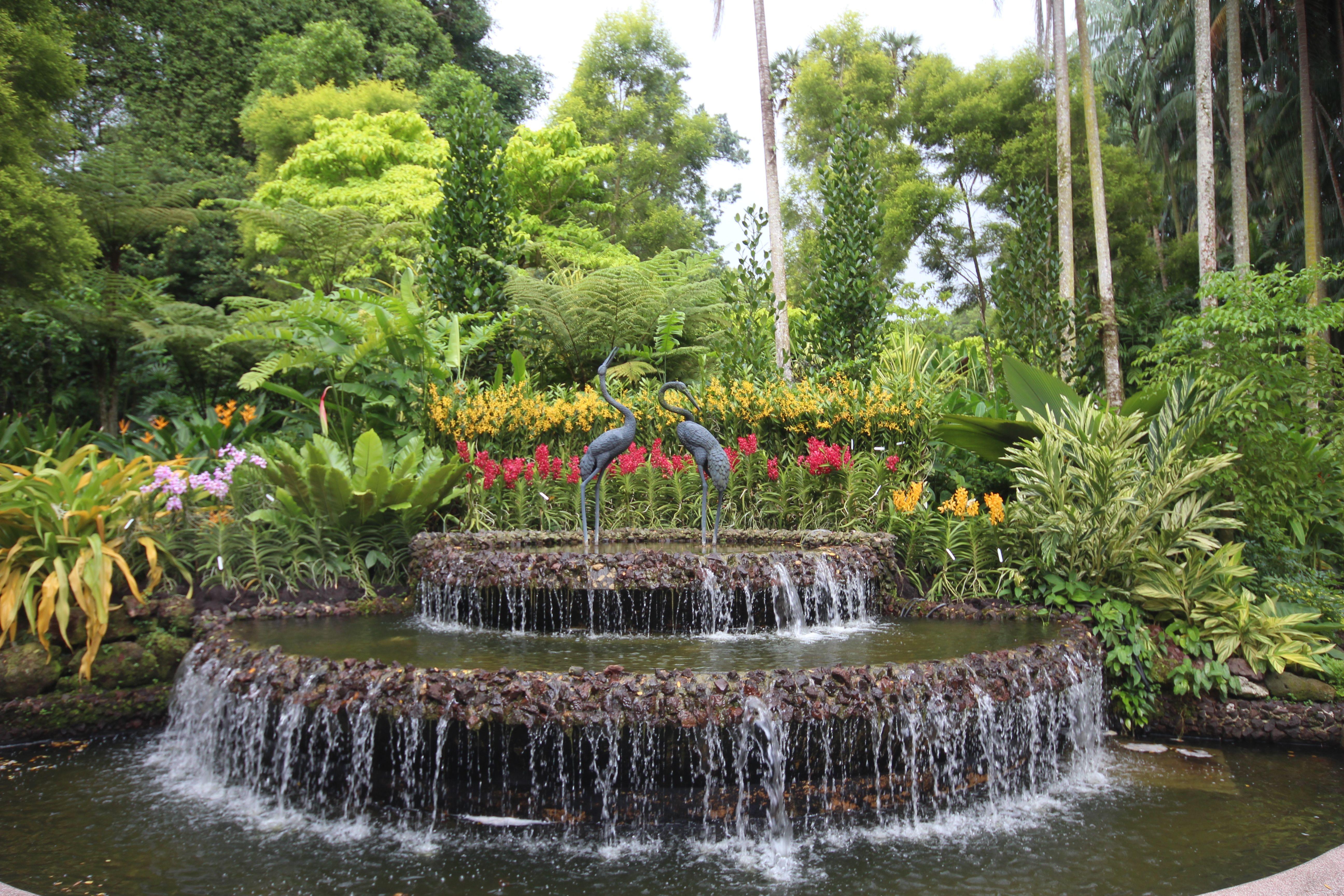 Singapore. Botanic Gardens Botanical gardens, Family