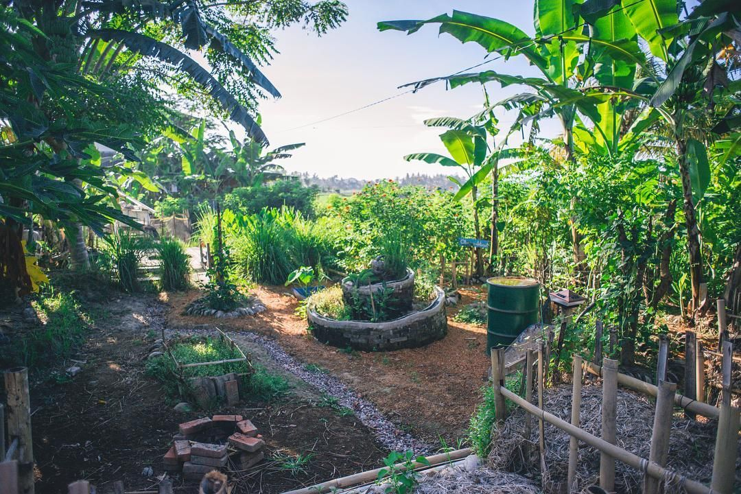 Sweet Saturday vibes at the farm : @brianaautran  #pagi #riseandshine #permaculture #farm #smallfarm #community #thinkgreen #suatainableliving #goodearthfarmbali #sprial #organic #farmlife #ubud #bali
