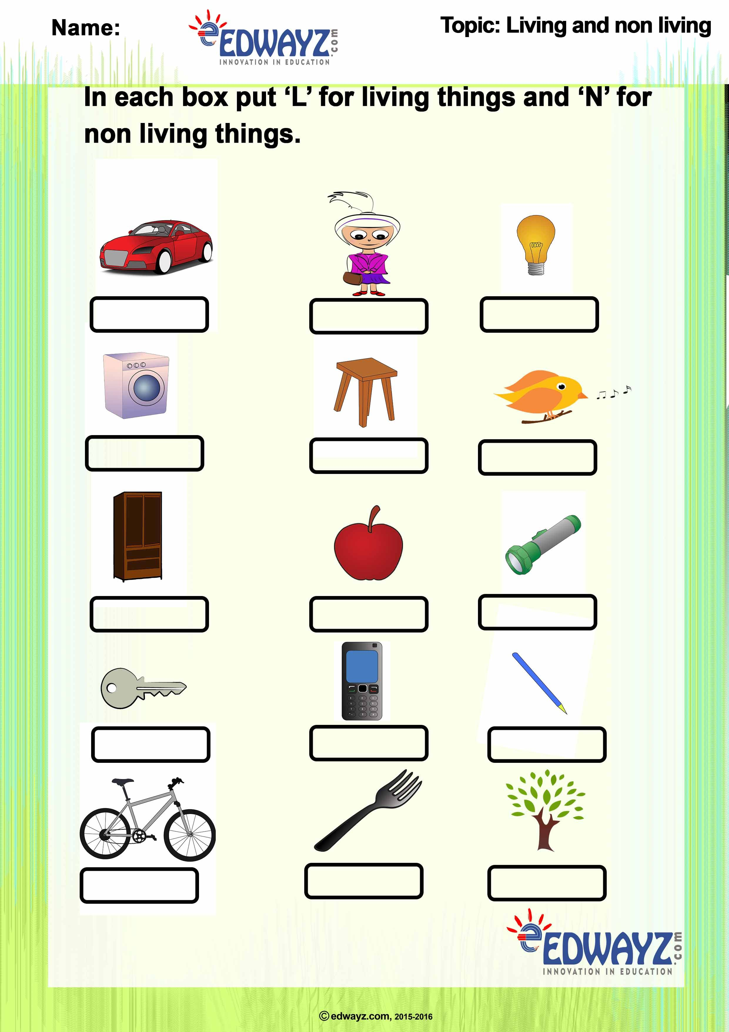 Worksheets-Class 2-Living \u0026 Nonliving things   Living and nonliving [ 3508 x 2480 Pixel ]