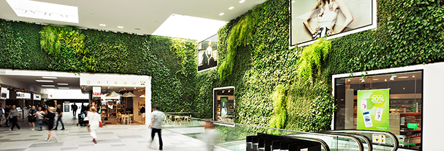 Interior Landscaping Office. Injecting Life Into Corporate Interiors    Design Home Interior Landscaping Office