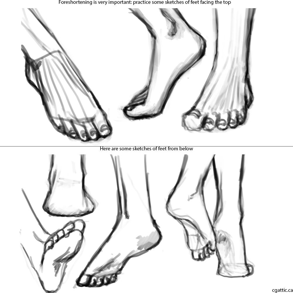 How to Draw Feet in 4 Steps With Photoshop