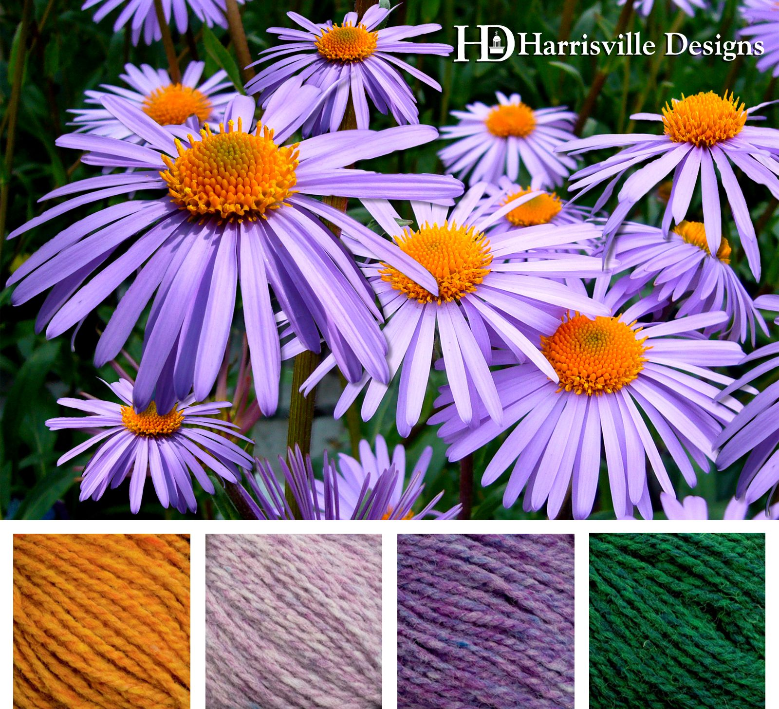Color Scheme Inspiration From Purple Daisies Uses Shetland Yarn Gold Lilac Periwinkle And Spruce 꽃 색깔 식물