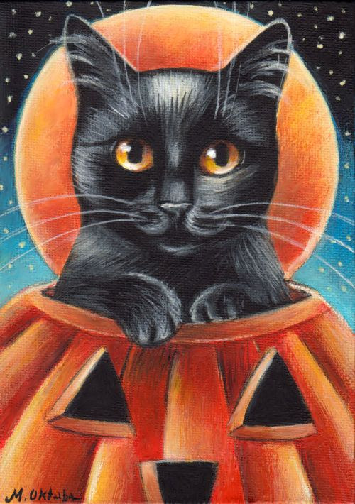 Fabric-Orange Pumpkins with Black Cats on Red -so cute
