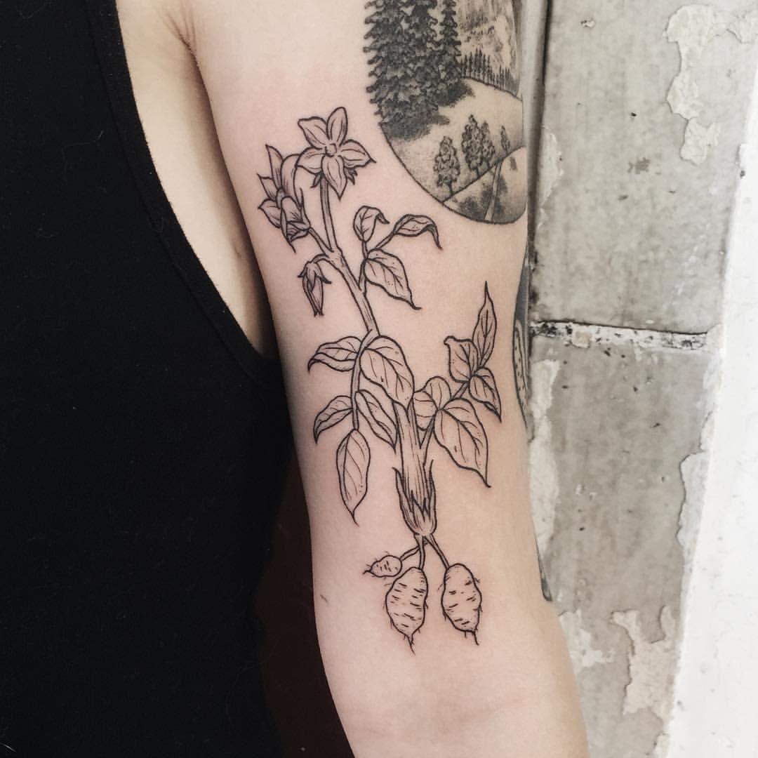 Tattoos By Olivia Harrison Potato Tattoo Tattoos Plant Tattoo
