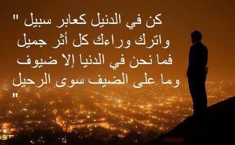 اﻻمام علي بن ابي طالب Kh Quran Verses Arabic Quotes Inspirational Quotes