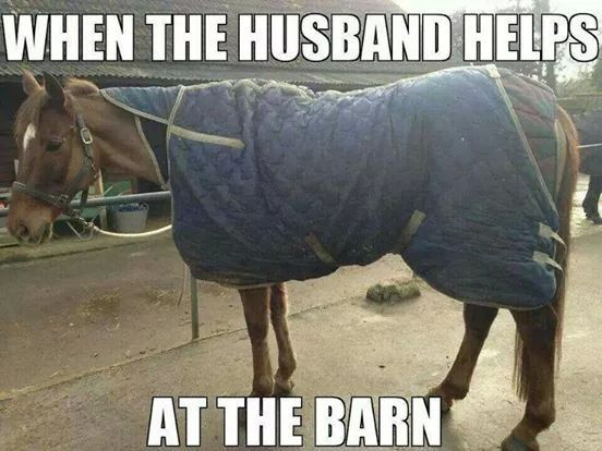 When the husband helps at the barn.
