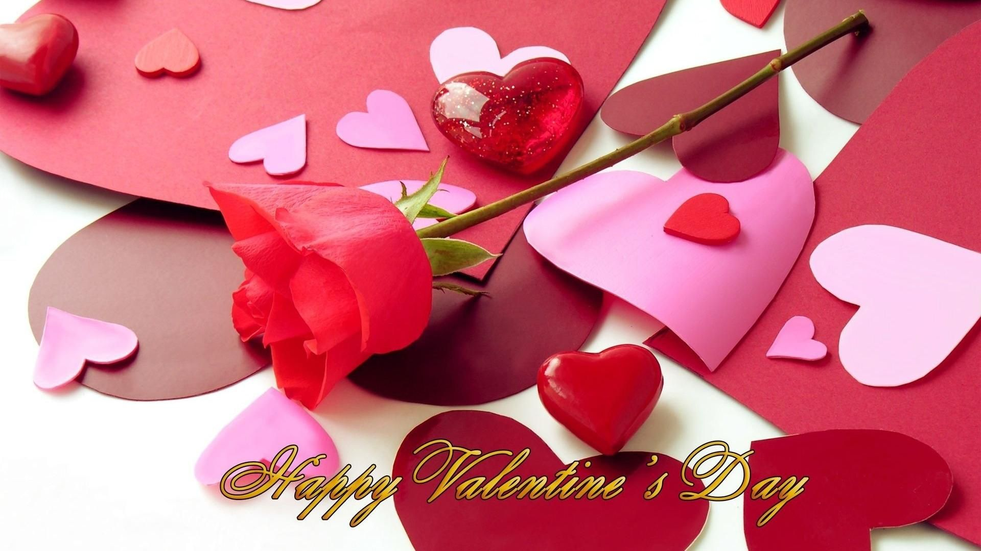 Happy Valentines Day Flower Hd Wallpaper Images Pinterest
