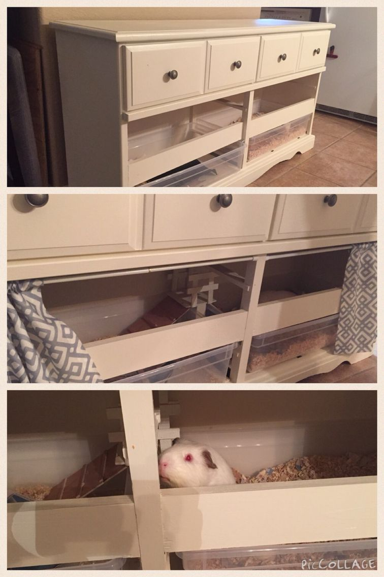 Cute and chic habitat for guinea pigs/rabbits. It's so