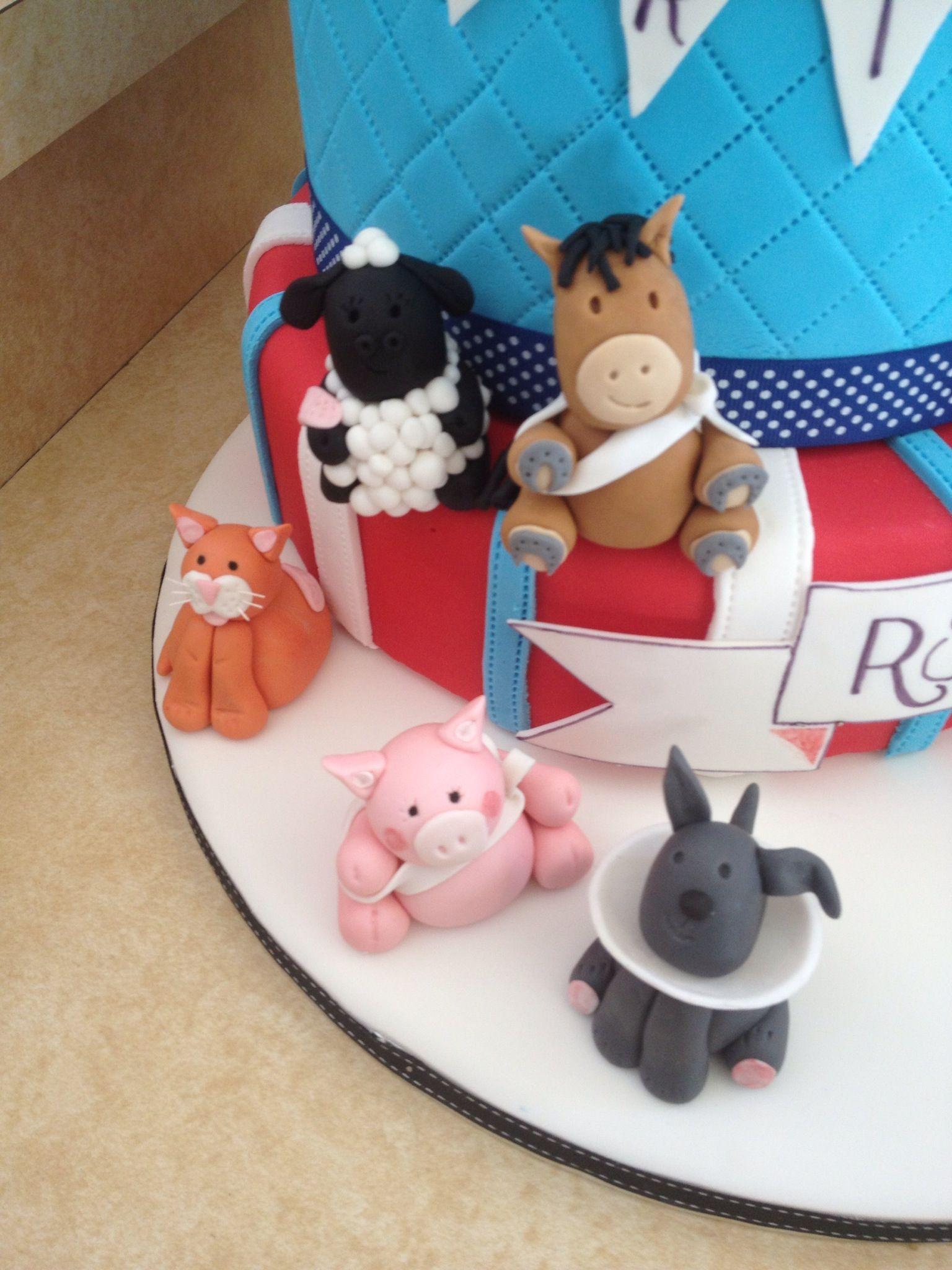Animal Details Vet Cake Vet Cake Birthday Cake Kids Graduation Cakes
