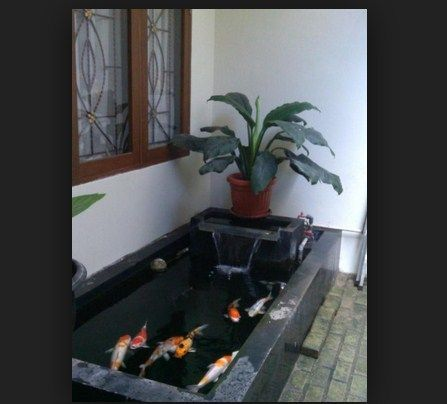 kolam ikan dibawah teras rumah - penelusuran google