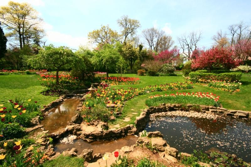 Smith Gardens Oakwood | Fasci Garden