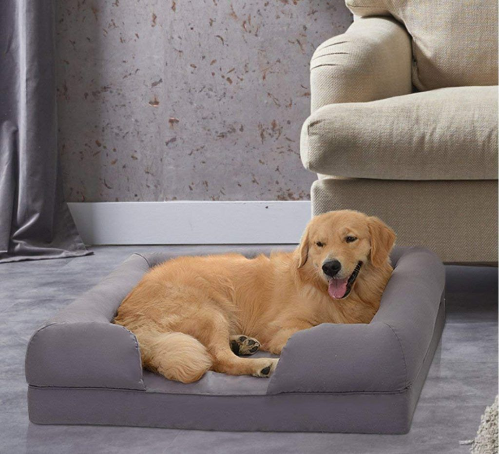 Petlo Dog Couch Dog couch, Best orthopedic dog bed, Dog bed