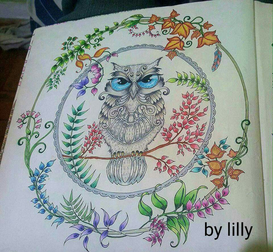 Floresta encantada coruja  #florestaencantada