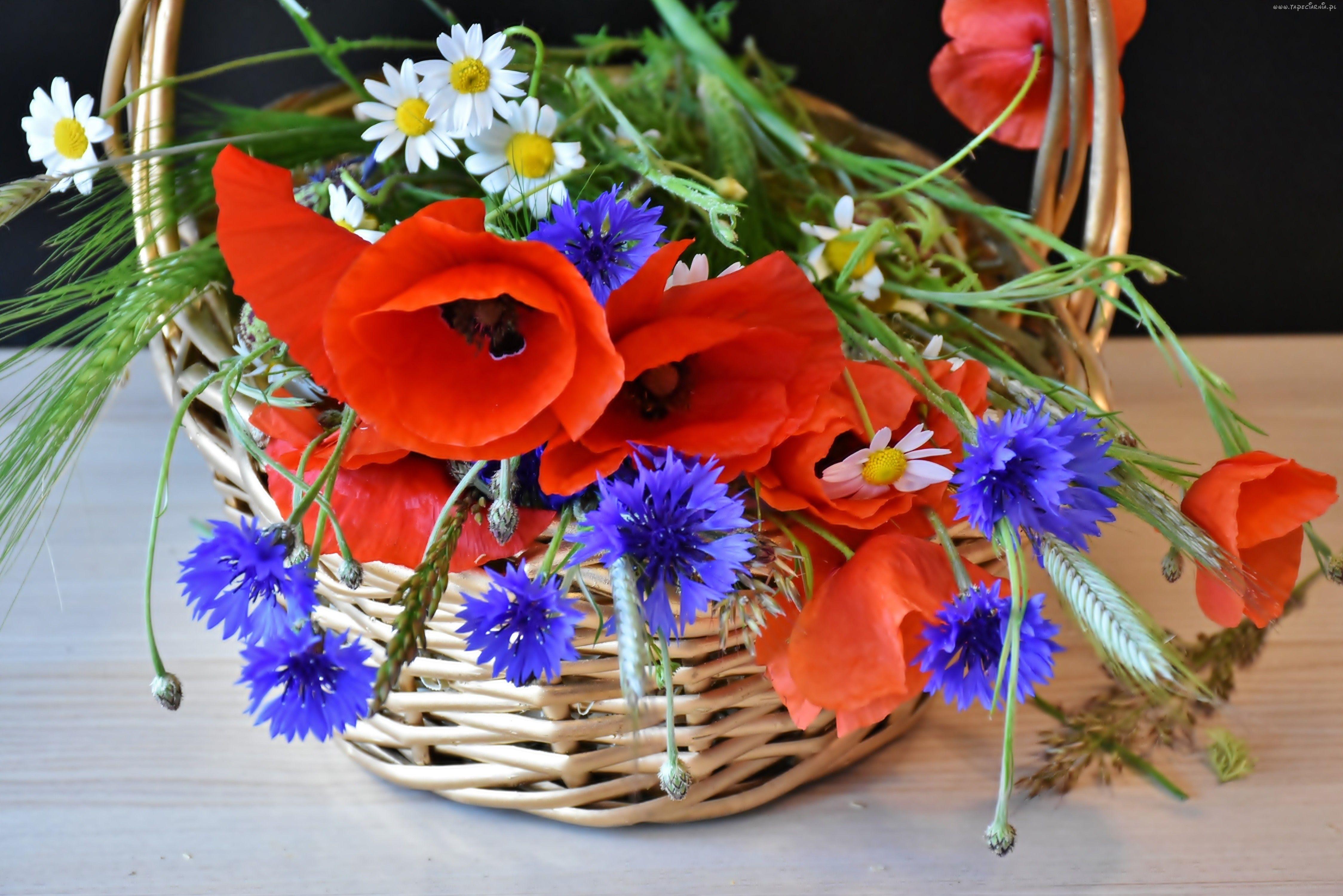 Bukiet Polnych Kwiatow Maki Chabry Rumianki Koszyk Dekoracja Poppy Bouquet Poppy Flower Flower Images Free