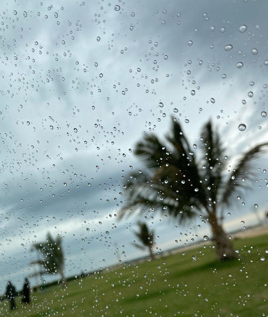 Rain makes everything beautiful💕🌧✨ #rain #rainday #rainwater #weather #saudiarabia #ksa #weatheringwithyou #2020 #rainydays☔️ #byme #picture #water #2020rain #amazing #niceweather #saudiarabia🇸🇦 #🌧 #pictureday #ksa🇸🇦 #مطر #جو #مطرالسعوديه #جوجميل