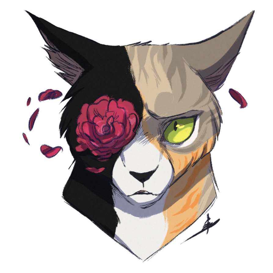 Commission Your Eyes By Owlcoat With Images Warrior Cat
